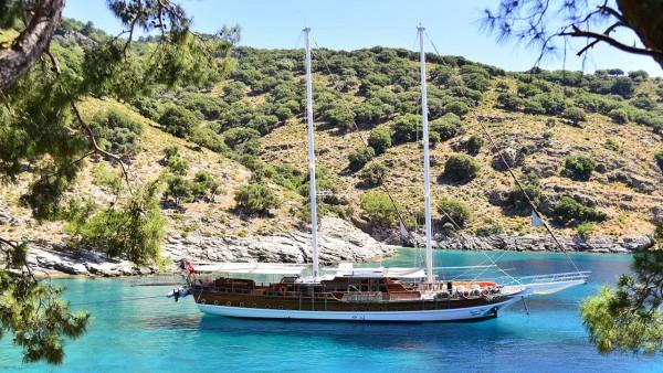Deniz Felix Balina Goleta