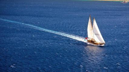 Goleta Eylul Deniz 2