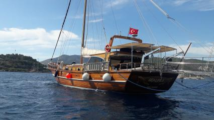 Goleta Sea Life S